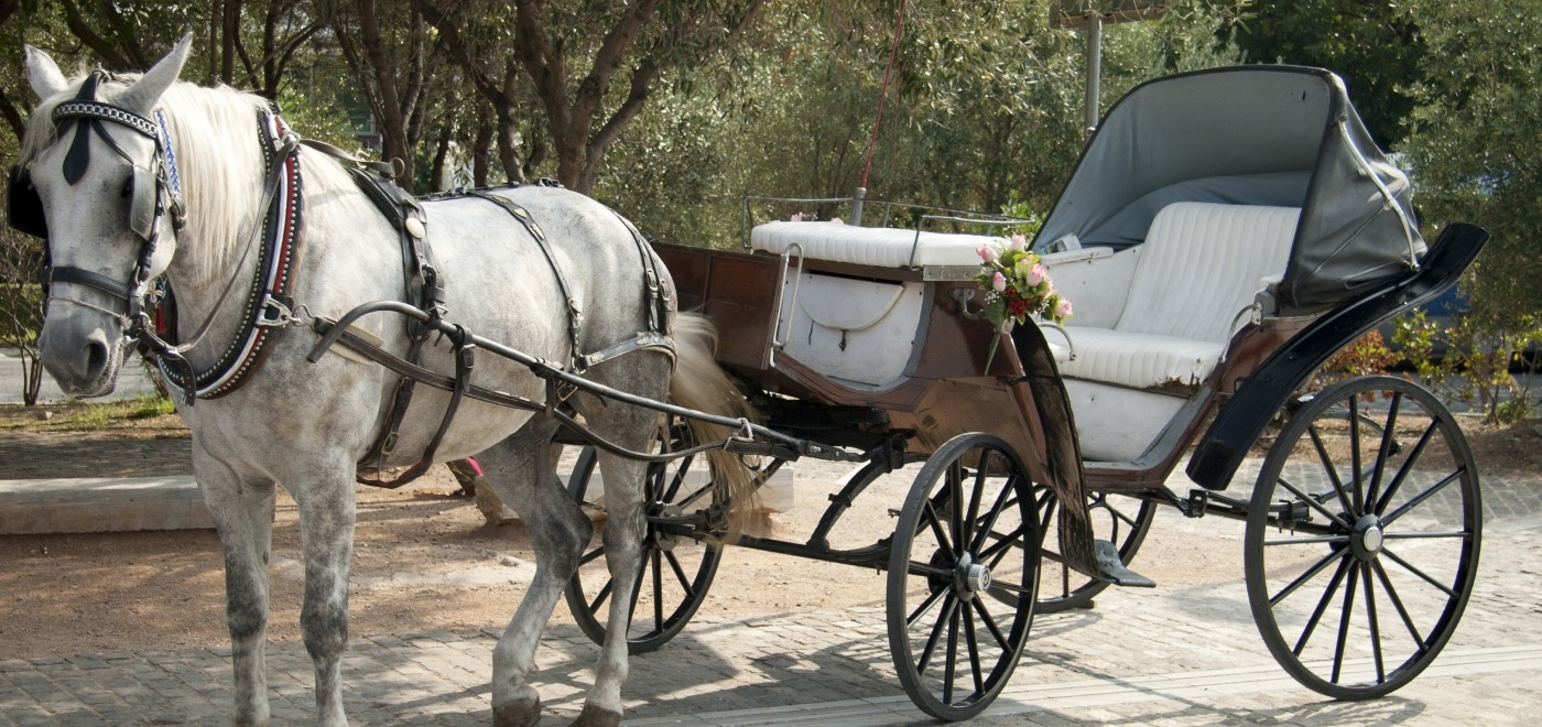 Carriage Rides in Cape May | Activities | Stockton Inns